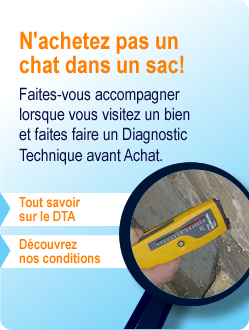 Diagnostic technique avant achat